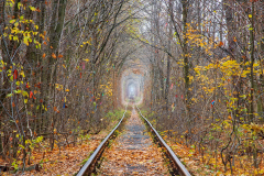 Tunnel of Love at late autumn. Klevan, Ukraine