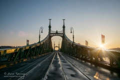 Scenic view of Liberty Bridge at Budapest