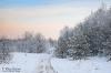 Зима в Ірдинських болотах