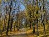 Парк декабристів у Кам'янці