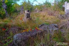 на козацькому кладовищі
